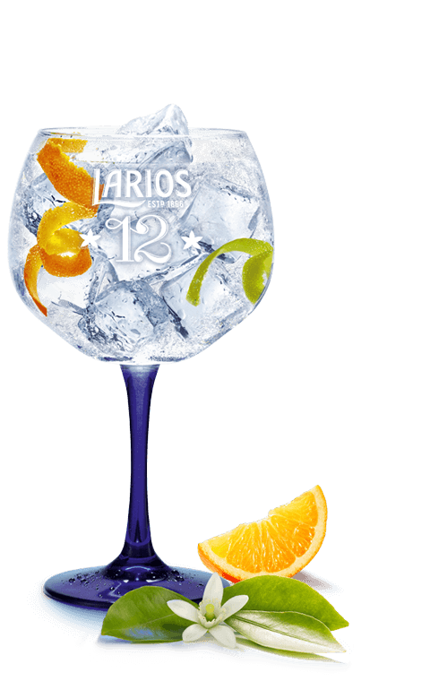 Larios Mediterránea Gin tonic