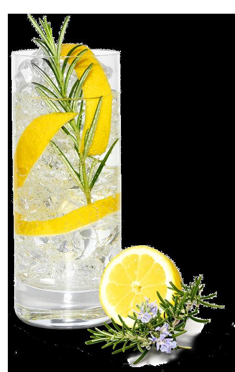 Gin Fizz Mediterránea